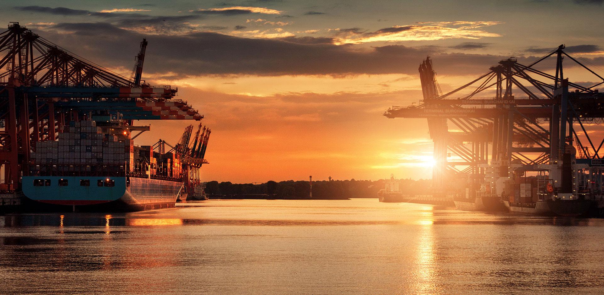 DR-Logistics-Partner-voor-zeevracht-luchtvracht-geconditioneerd-vervoer-import-export